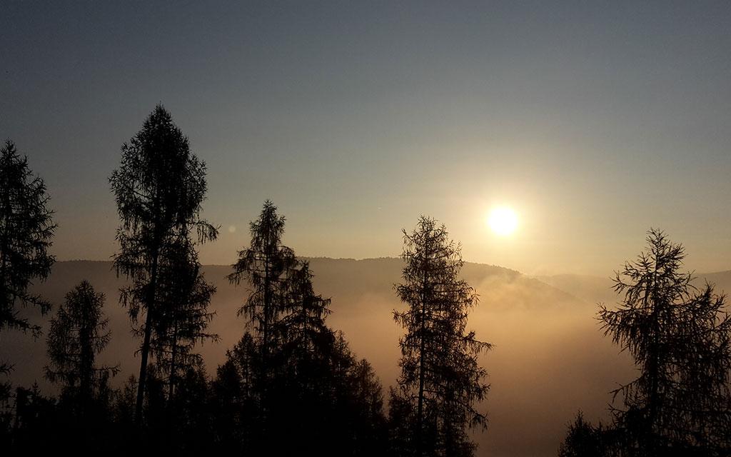 Weilbach Natur Landschaft