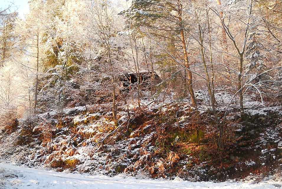 Weilbach Wald im Winter